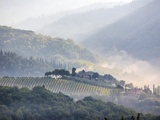 View from above of Tuscan Villa and Vineyard on a Foggy Morning Photographic Print by Terry Eggers