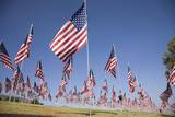 US Flags for 9/11 Memorial Photographic Print by Joseph Sohm