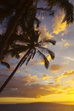 Sunset with Palm Trees in Kihei, Maui, Hawaii Photographic Print by Ron Dahlquist