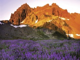 Three Fingered Jack Mountain Photographic Print by Steve Terrill