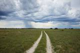 Sand Road and Thunderstorm, Botswana Photographic Print by Richard Du Toit
