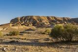 Negev Desert, Landscape Photographic Print by Massimo Borchi