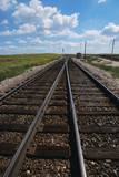 Railroad Tracks Photographic Print by W. Perry Conway