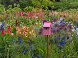 Pink Birdhouse in Flower Garden Photographic Print by Steve Terrill