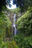Waterfall along the Hana Highway Photographic Print by Terry Eggers