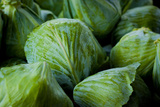 Green Cabbage Fresh Produce Photo Poster Print Prints