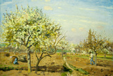 Camille Pissarro Le Verger The Orchard Art Print Poster Prints