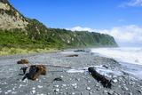 Greyrocky Beach in Okarito Along the Road Between Fox Glacier and Greymouth Photographic Print by Michael Runkel