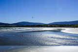 Te Waewae Bay, Along the Road from Invercargill to Te Anau, South Island, New Zealand, Pacific Photographic Print by Michael Runkel