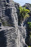 Beautiful Rock Formation, Pancake Rocks, Paparoa National Park Photographic Print by Michael Runkel