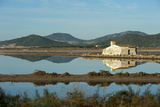 Salt Lake, Ses Salines Natural Park, Ibiza, Balearic Islands, Spain, Mediterranean, Europe Photographic Print by Emanuele Ciccomartino
