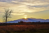 Sunset over Mount Canigou, Languedoc-Roussillon, Pyrenees Orientale, France, Europe Photographic Print by Mark Mawson