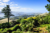 View from Larnach Castle over the Otago Peninsula, South Island, New Zealand, Pacific Photographic Print by Michael Runkel