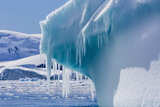 Icicles Hang from a Glacial Iceberg at Cierva Cove, Antarctica, Polar Regions Photographic Print by Michael Nolan