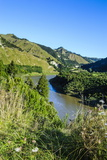 View over the Whanganui River in the Lush Green Countryside, Whanganui River Road, North Island Photographic Print by Michael Runkel