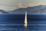 Sailing Boat in the Fjords around Picton, Marlborough Region, South Island, New Zealand, Pacific Photographic Print by Michael Runkel