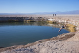 Man Diving into One of the Twin Fresh Lakes (Sala Eyes) in San Pedro De Atacama Photographic Print by Kimberly Walker