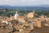 View over City Rooftops to Rolling Hills, the Basilica of San Francesco Prominent, Siena Photographic Print by Ruth Tomlinson