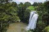Whangarai Falls, North Island, New Zealand, Pacific Photographic Print by Michael Runkel