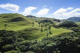 Beautiful Green Scenery Behind Wharariki Beach, South Island, New Zealand, Pacific Photographic Print by Michael Runkel