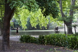 Woman Jogging in Hyde Park, Perth, Western Australia, Australia, Pacific Photographic Print by Lynn Gail
