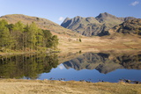 The Langdale Pikes Reflected in Blea Tarn, Above Little Langdale, Lake District National Park Photographic Print by Ruth Tomlinson