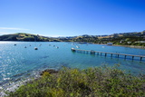 Little Boats in the Akaroa Harbour, Banks Peninsula, Canterbury, South Island, New Zealand, Pacific Photographic Print by Michael Runkel
