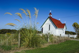 Lonely Church in the Catlins, South Island, New Zealand, Pacific Photographic Print by Michael Runkel