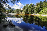 Trees Reflecting in the Water, Mirror Tarn, Oparara Basin Photographic Print by Michael Runkel