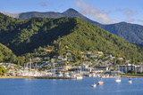 Harbour of Picton Landing Point of the Ferry, Picton, Marlborough Region Photographic Print by Michael Runkel