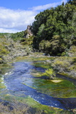 Geothermal River in the Waimangu Volcanic Valley, North Island, New Zealand, Pacific Photographic Print by Michael Runkel