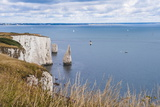 Chalk Stacks and Cliffs at Old Harry Rocks, Between Swanage and Purbeck, Dorset Photographic Print by Matthew Williams-Ellis