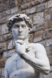 The David, by Michelangelo, Palazzo Vecchio Photographic Print by Nico Tondini