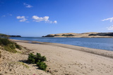 Lonely Beach in the Arai-Te-Uru Recreation Reserve South End of Hokianga Harbour Photographic Print by Michael Runkel
