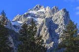 Mount Owen and Pines from Cascade Canyon, Grand Teton National Park, Wyoming, Usa Photographic Print by Eleanor Scriven