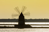 Old Windmill Used to Raise Water from the Stagnone Lagoon into Salt Pans South of Trapani Photographic Print by Rob Francis