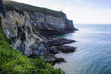 Steep Cliffs at Taiaroa Head, Otago Peninsula, South Island, New Zealand, Pacific Photographic Print by Michael Runkel