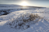 Snow-Covered Winter Landscape Near Gullfoss Waterfall, Iceland, Polar Regions Photographic Print by Lee Frost