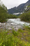 Roaring River, Wildflowers and Mountains, Lodal Valley Near Kjenndalen Glacier Photographic Print by Eleanor Scriven