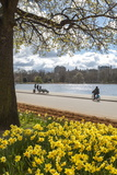 Charlie Harding - Visitors Walking Along the Serpentine with Daffodils in the Foreground, Hyde Park, London, England - Fotografik Baskı