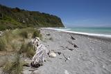 Okarito Beach, Okarito, Tai Poutini National Park, West Coast, South Island, New Zealand, Pacific Photographic Print by Stuart Black