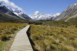 Boardwalk on Hooker Valley Trail with Mount Cook, Mount Cook National Park, Canterbury Region Photographic Print by Stuart Black