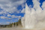 Lone Observer Watches Grand Geyser Erupt, Upper Geyser Basin, Yellowstone National Park Photographic Print by Eleanor Scriven