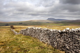 Dry Stone Wall at Winskill Stones with Pen Y Ghent Beyond, Near Settle, Yorkshire Dales Photographic Print by Mark Sunderland
