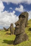 Moai Sculptures in Various Stages of Completion at Rano Raraku Lámina fotográfica por Michael Nolan