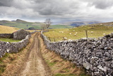 The Pennine Bridle Way Near Stainforth in Ribblesdale, Yorkshire Dales, Yorkshire, England Photographic Print by Mark Sunderland