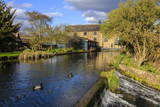 Caudwell's Mill, Mill Cottages and Mallard Ducks in Spring, a Listed Historic Roller Flour Mill Photographic Print by Eleanor Scriven