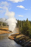 Eruption of Riverside Geyser Seen from Firehole River Bridge Photographic Print by Eleanor Scriven
