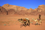 Bedouin and Camels, Wadi Rum, Jordan, Middle East Photographic Print by Neil Farrin