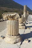 Ionic Column, Ancient Ephesus, Near Kusadasi, Anatolia, Turkey, Asia Minor, Eurasia Photographic Print by Eleanor Scriven